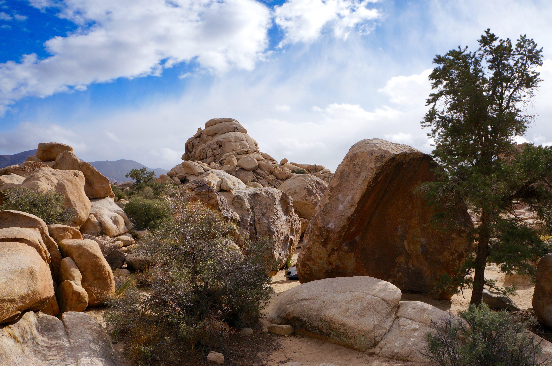 behind-boulders-joshua-tree